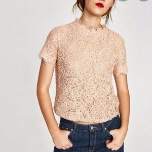 Zara Trafaluc Embroidered Lace Top Sz S ::SS15
